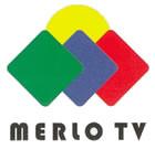 merlotv